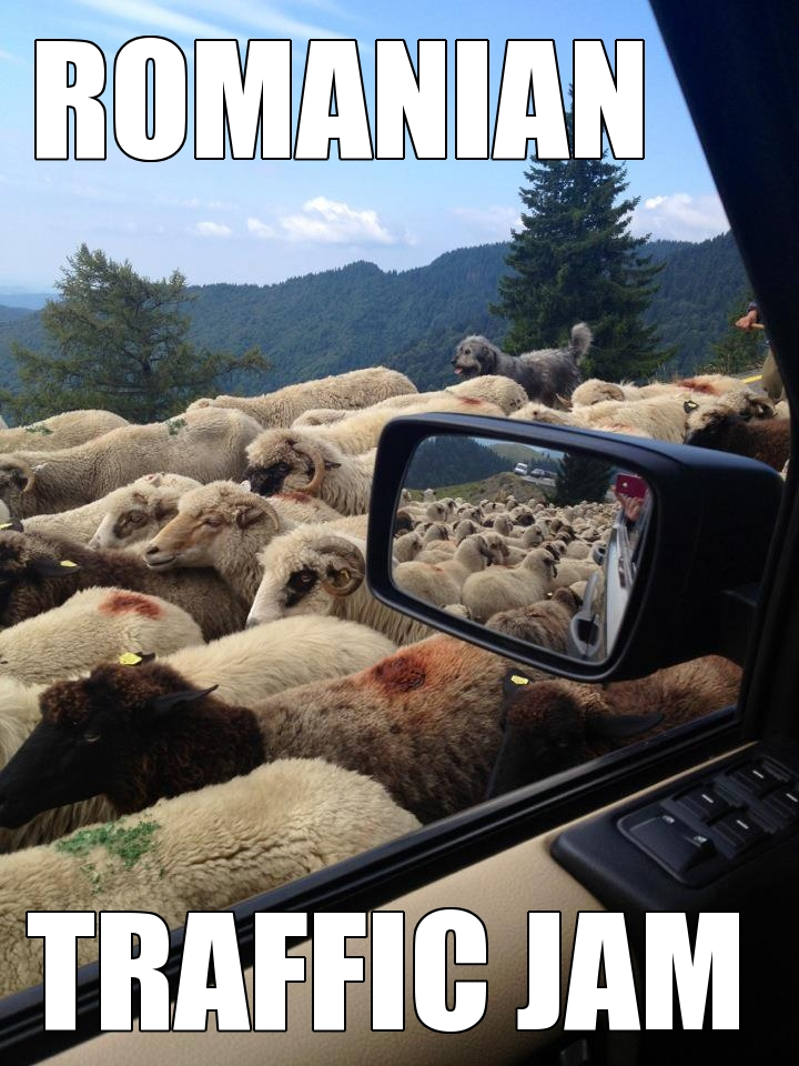 romanian traffic jam romanian traffic jam all things romania
