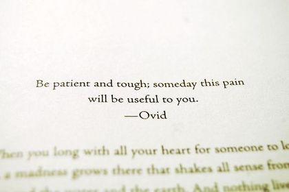 ovid quote