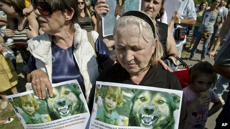 Protestors in Piata Romana use a photo of an unrelated snarling dog to punk the BBC into using this image in their article