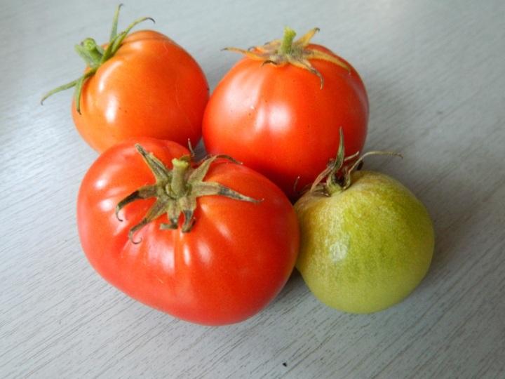 fourtomatoes