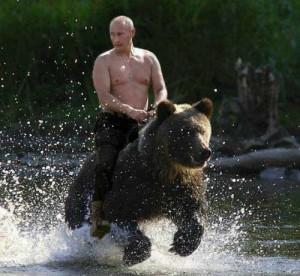 Preved medved!