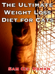 Ultimate Weight Loss Guide for Cats